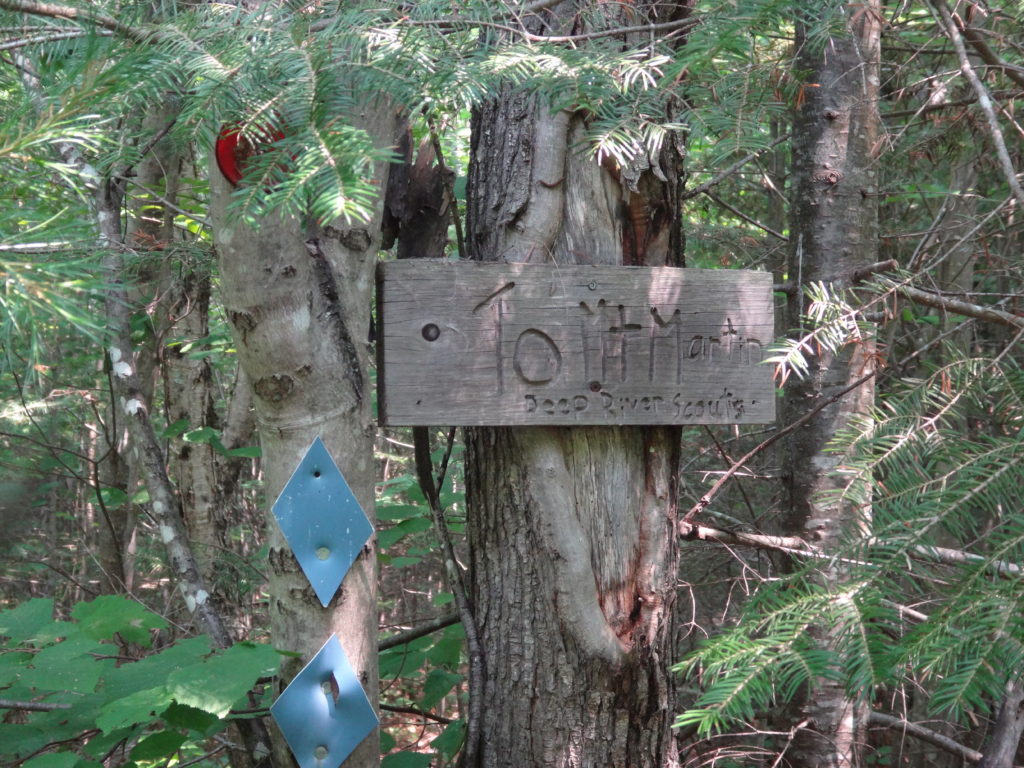 A weathered, wood sign attached to a tree marks the trailhead to Mount Martin.