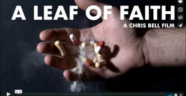 A Leaf of Faith Trailer photo