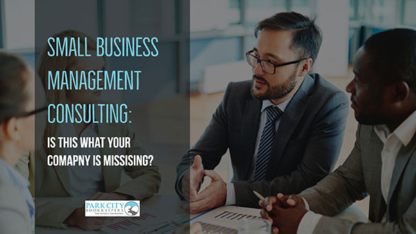 Small Business Management Consulting: Is This What Your Business is Missing?