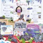 王惠美照顧葡萄農民 促銷彰化優鮮葡萄