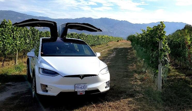 Current Taxi - our Tesla Model X in a sunny vineyard