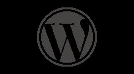 WordPress Content Management Websites