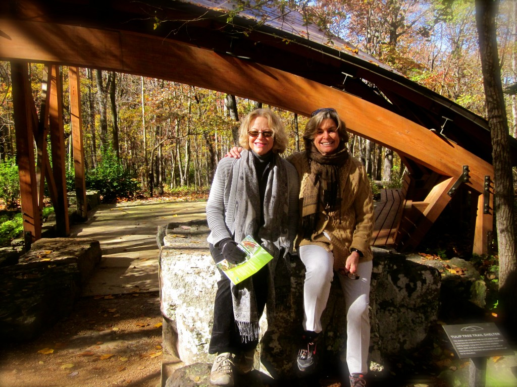 Donna and I got up early to hike the Art Trails at the Museum before it officially opened.