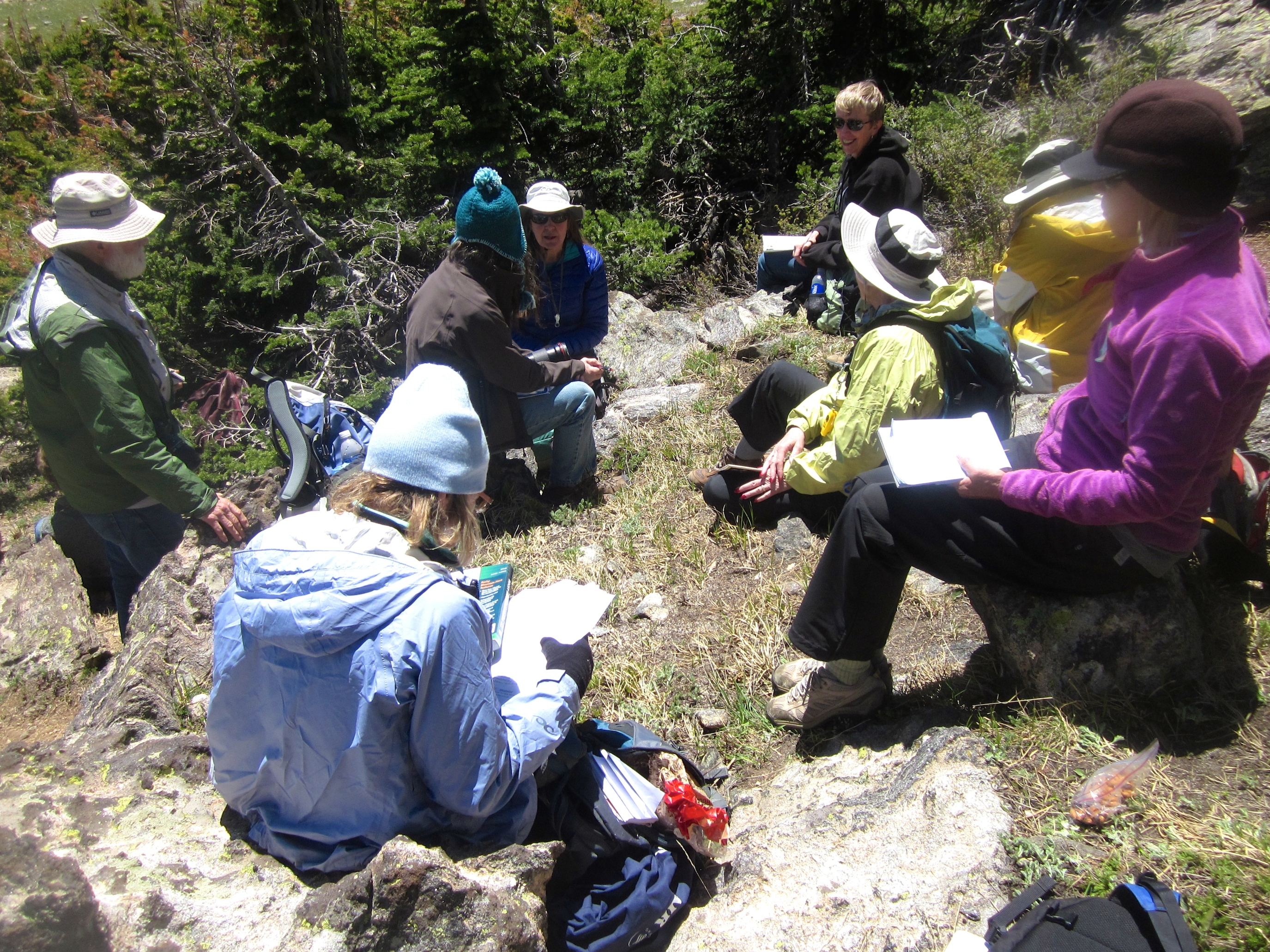 Our Sunday day-long Alpine Wildflower class, above 11,000' complete with 30 MPH winds. Not kidding. Our instructor found a small hideaway where we could eat lunch and review our morning's work.