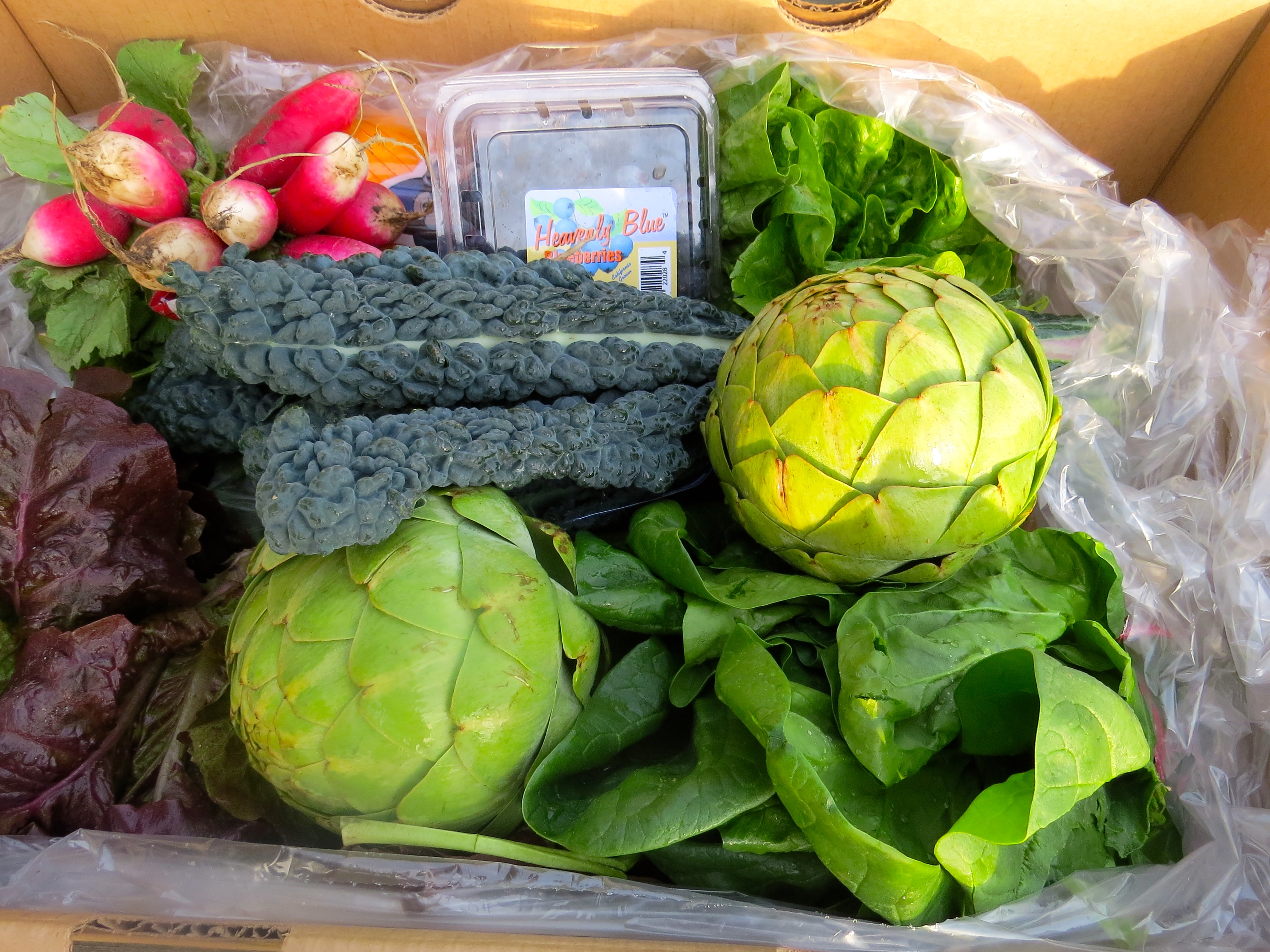 My first bounty from Talley Farms' Fresh Harvest produce box.
