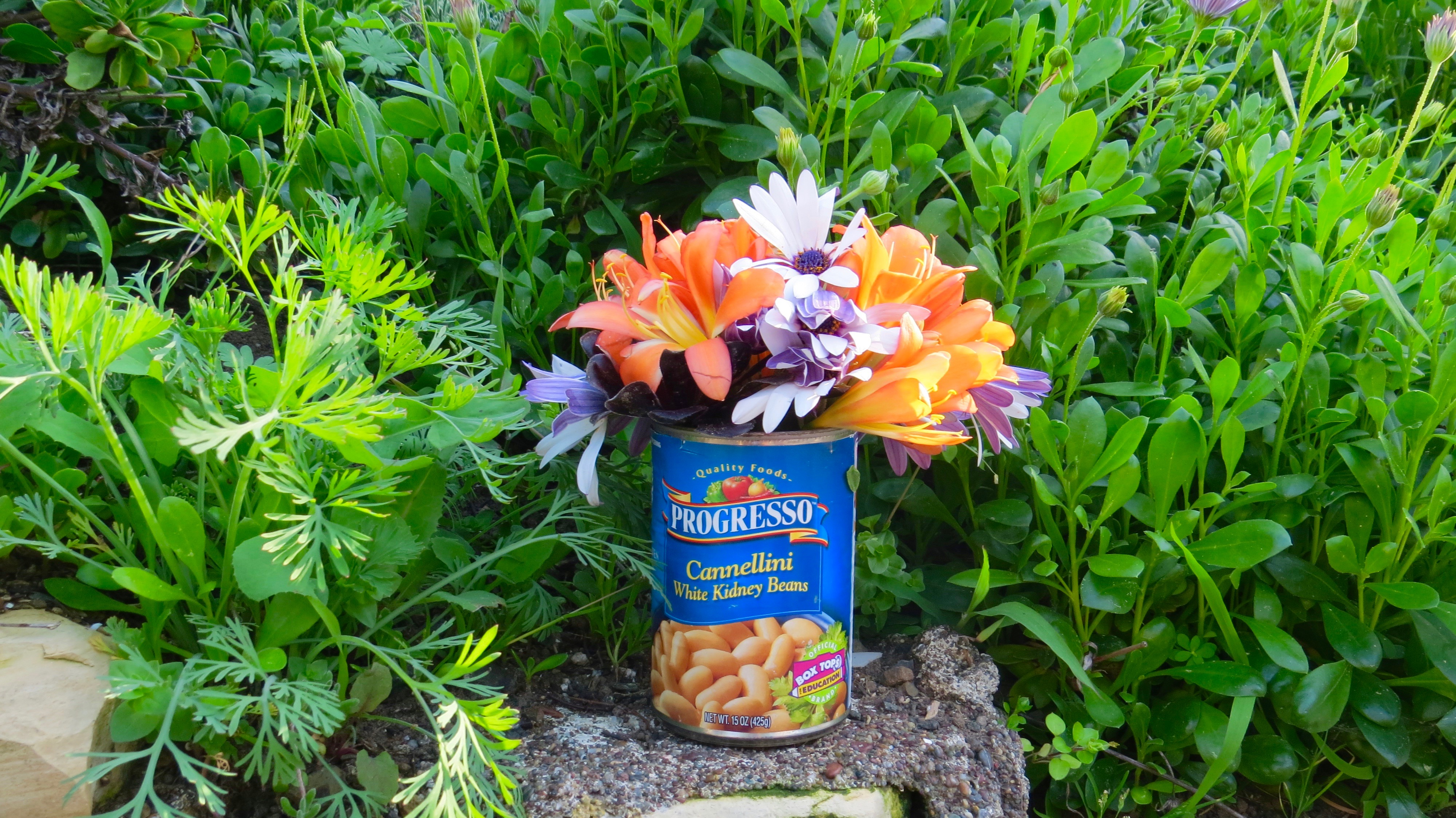 My yard is a flower shop but no container in sight around here.  So I retrieved my cannellini can from the bin and made my own vessel for my bouquet.