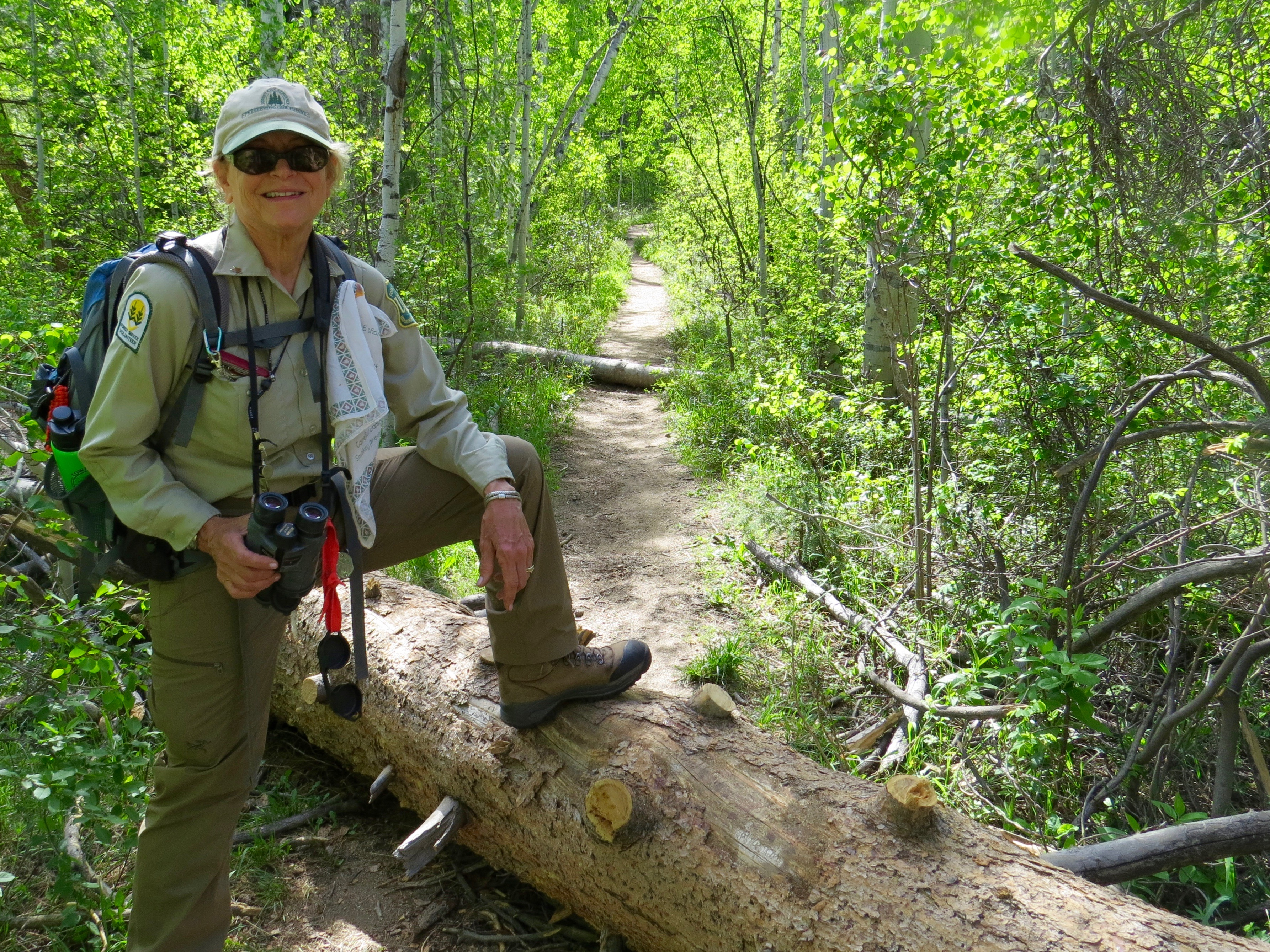 In June we volunteers check the trails for fallen trees and report back to the USFS. They send crews to clear the  pathways.  My friend, Donna Grauer and I thought these logs were a bit too much for us.