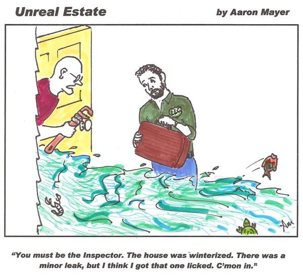Funny Home Inspection Cartoon