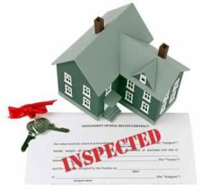 Mold Inspection Glendale CA