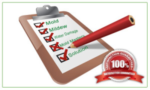 Mold Inspection Pasadena