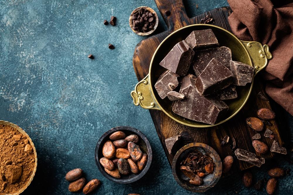 Les effets positifs du cacao sur la santé cardiovasculaire