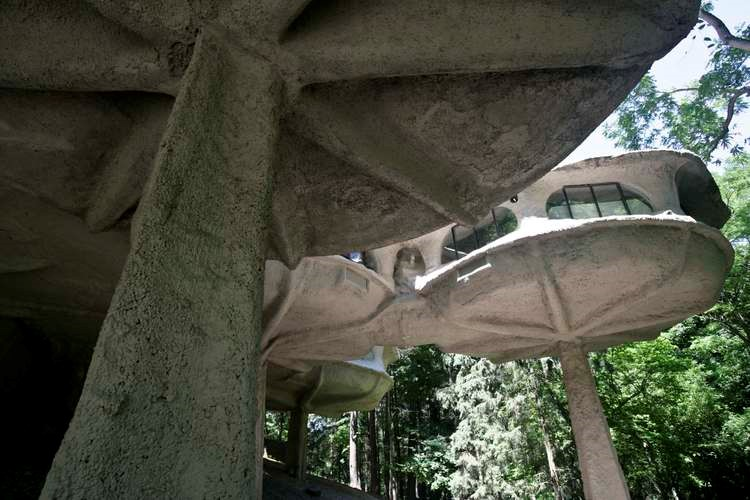 Mushroom house pods from below