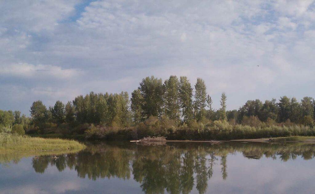 Flathead Montana the Flathead River