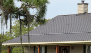 A standing seam metal roof on a Florida home with palm trees in the foreground.