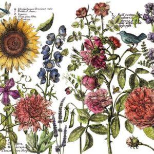 Botanist's Journal 24x33 Decor Transfer™