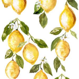 Lemon Drops 12x33 IOD Decor Transfer™