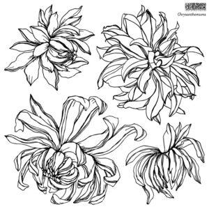 IOD Chrysanthemums Stamp