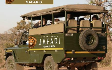 Jafari Safaris Logo | Safari Logo | Travel Logo | Travel Tour Logo Design | Hire Logo Design Tours