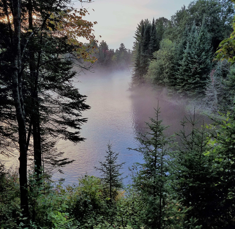 Au Sable River at Riverview