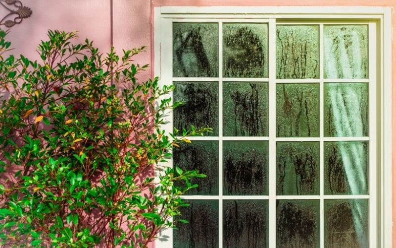 Why Does My Home Feel Humid?