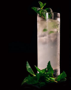Gothic Gin Gargoyle