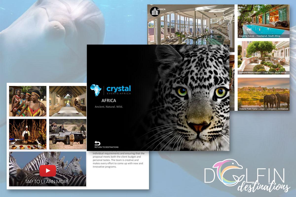 Powerpoint Presentation for DMC Company