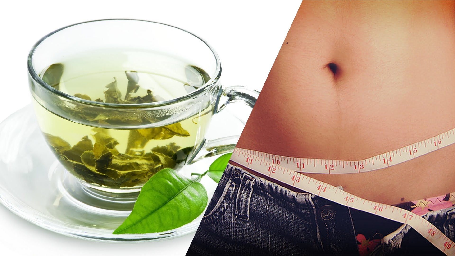 weight loss and green tea