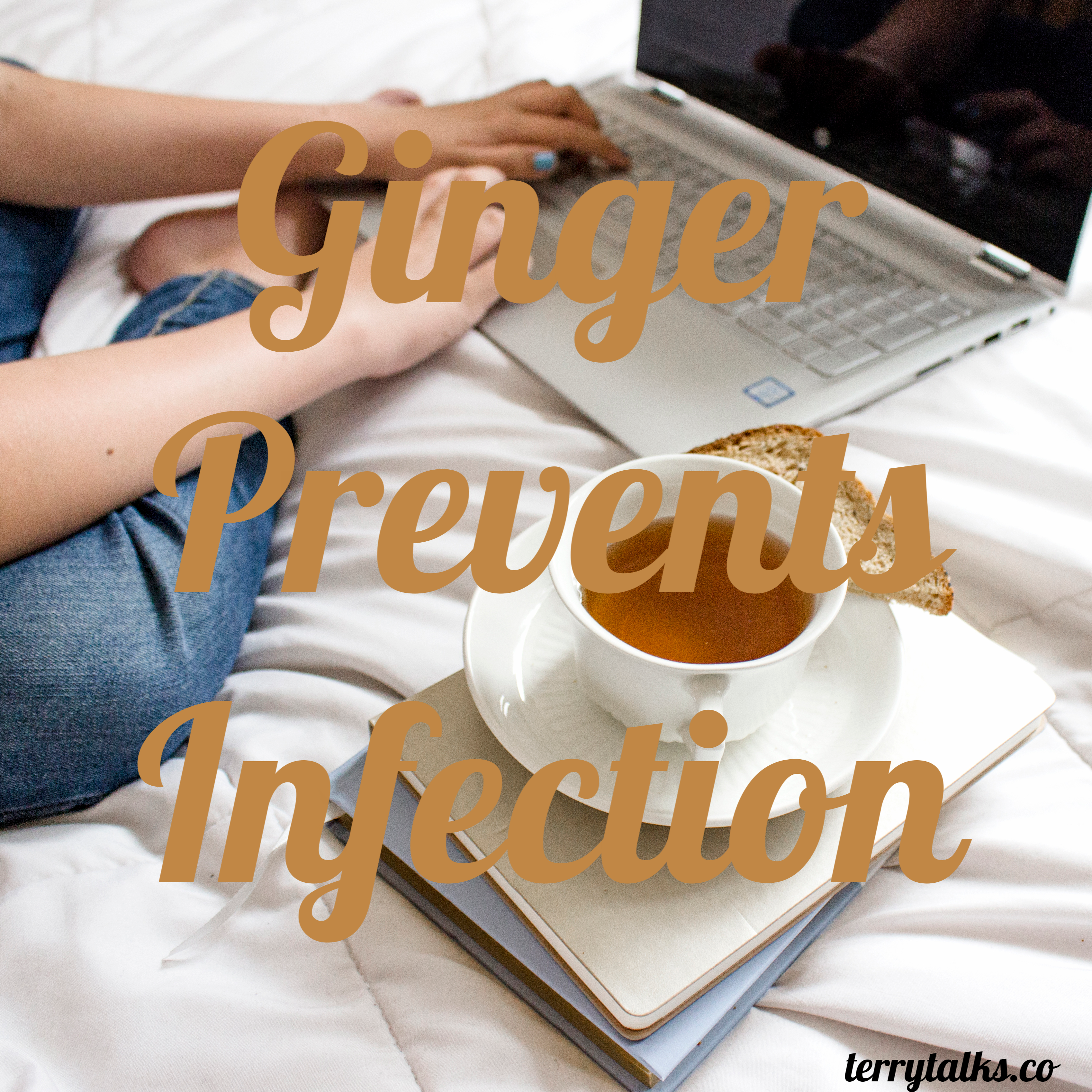 Ginger Prevents Infection