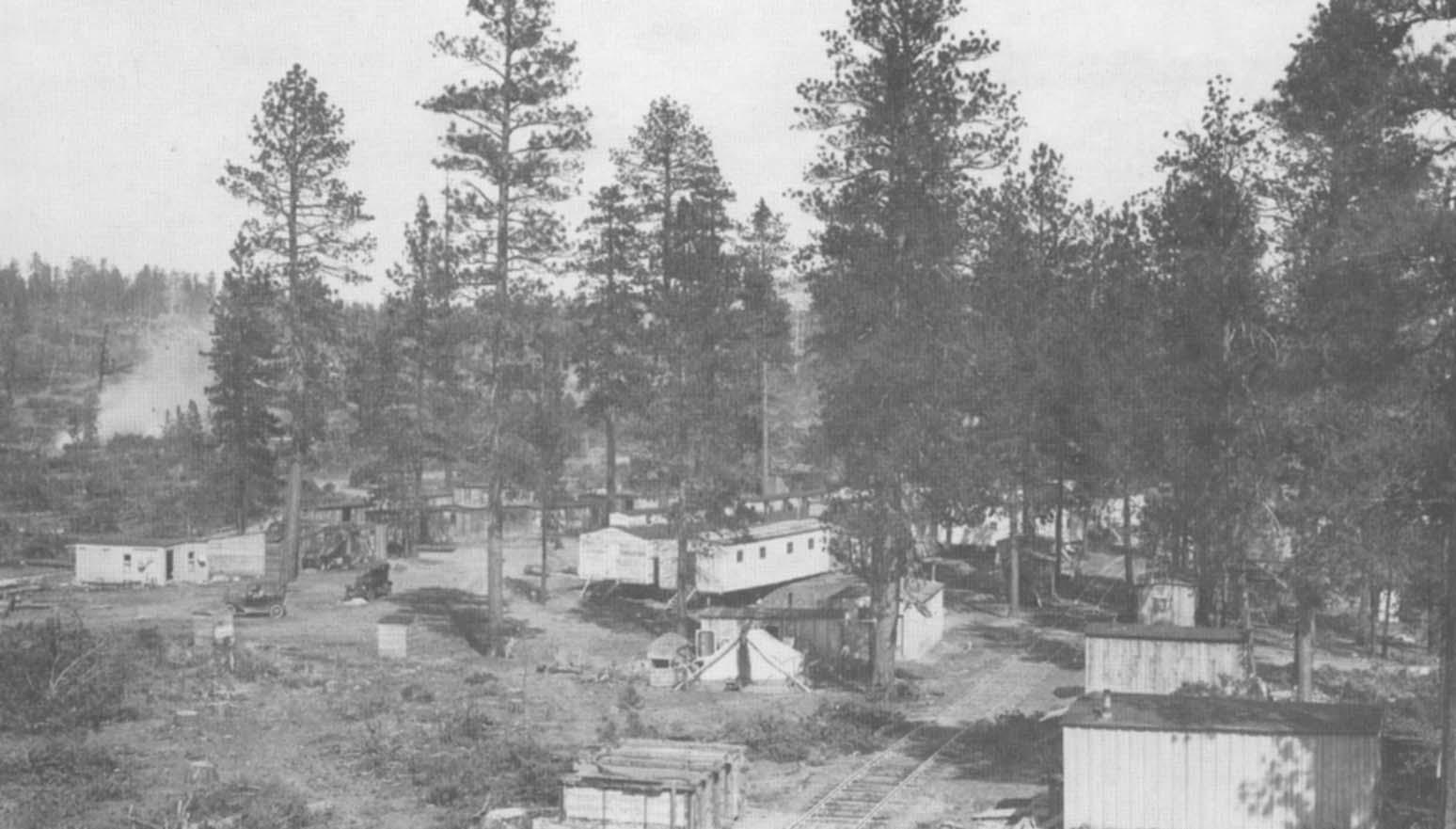 A Portable Railroad Logging Town