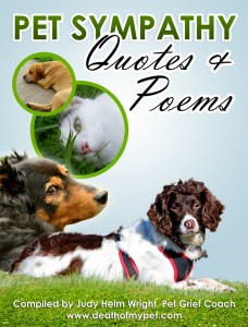 Pet Sympathy Quotes and Poems, cats and dogs, dogs and cats, which is better dogs or cats,