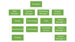 Matrix Org Structure
