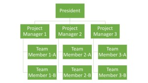 Project Org Structure