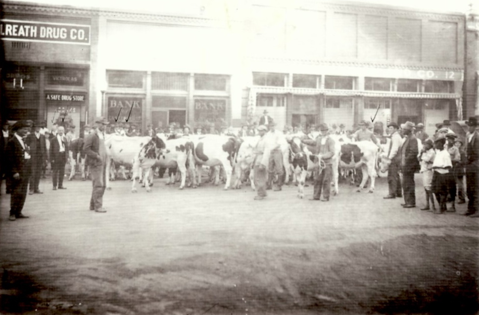 Cow delivery at RR Depot