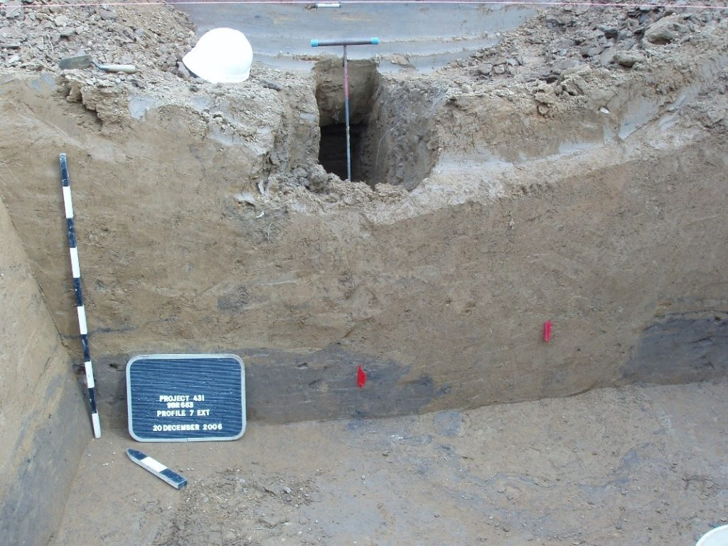 Figure 10. Photograph of eastern end of trench. Existing waterline along River Court SW running parallel to this trench wall is marked by blue-handled probe. Feature 2498 is the small dark soil stain marked by the red flag on the left, while the center of the large post feature, Feature 2497, is marked by the red flag on the right. The dark soil lens in the trench profile is a midden, while the homogenous brown soil atop it and in the hole left by the removal of the large post in Feature 2497 is believed to be the first stage of Mound B. Note that remnants of the midden ring the large post feature from when it was extracted.