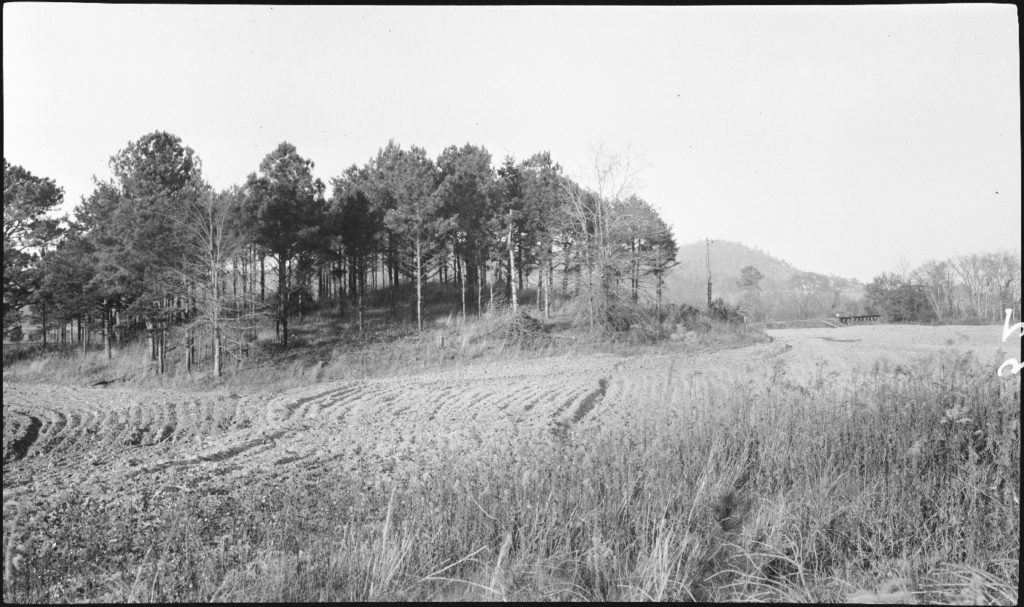 """Figure 6. 1917 Photograph of Mound B (Anonymous 1917). Original caption reads: """"Indian Mound on Leake Property, 4 Mi. S.W. of Cartersville""""."""