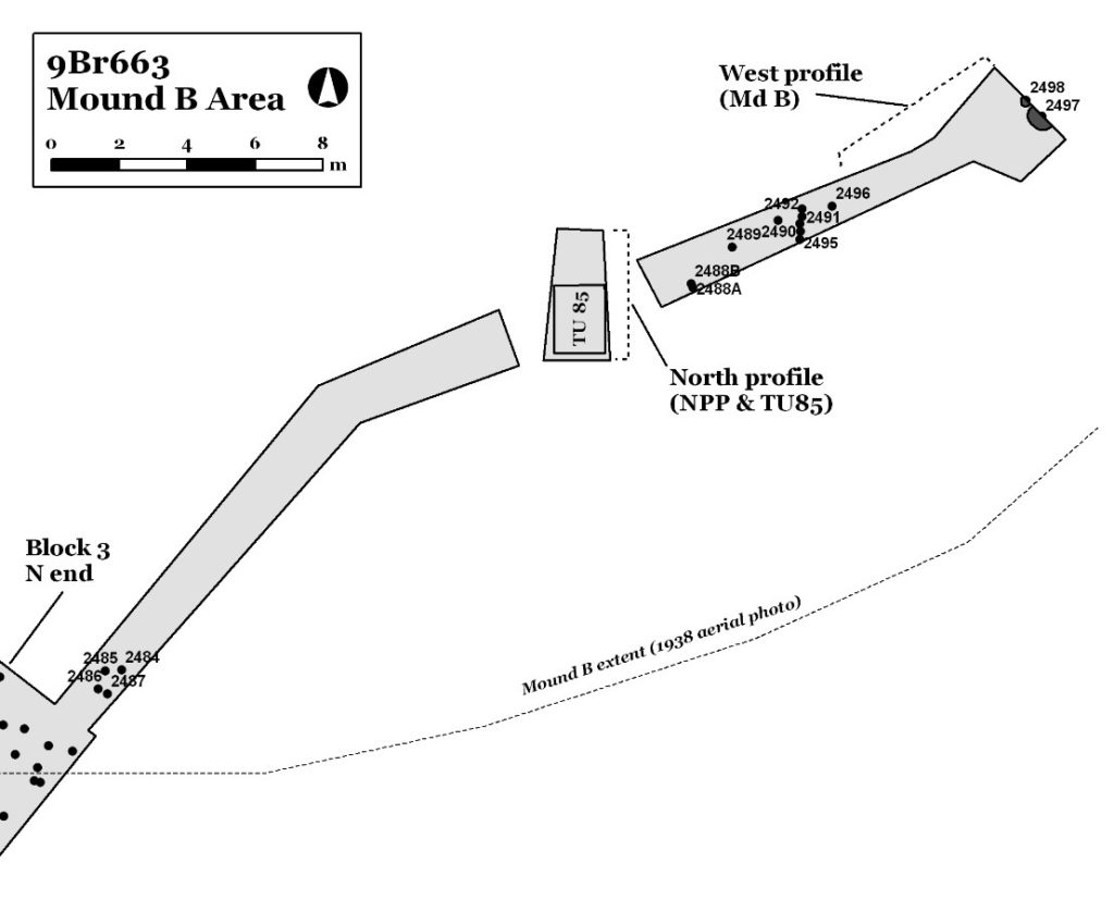Figure 8. Map showing excavations in Mound B (Keith 2010:139 Figure 142).