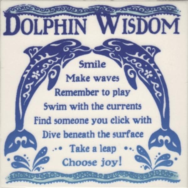Dolphin Wisdom