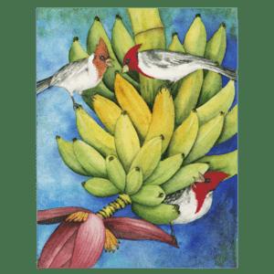 Brazilian Cardinals in the Bananas Giclée
