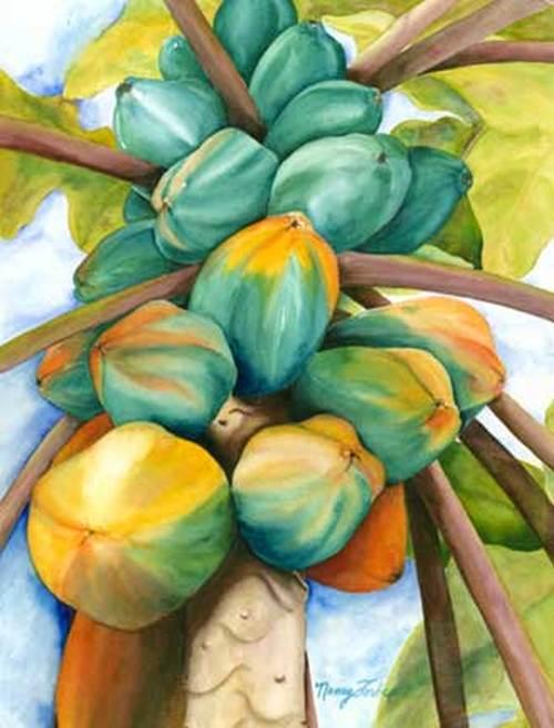 Papayas Nancy Forbes
