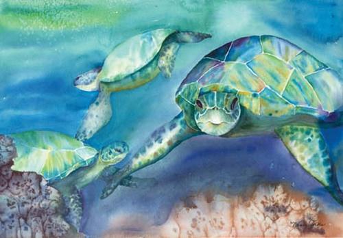 Three Turtles Nancy Forbes
