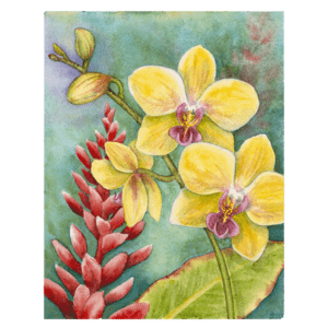 Orchids & Red Ginger Giclée