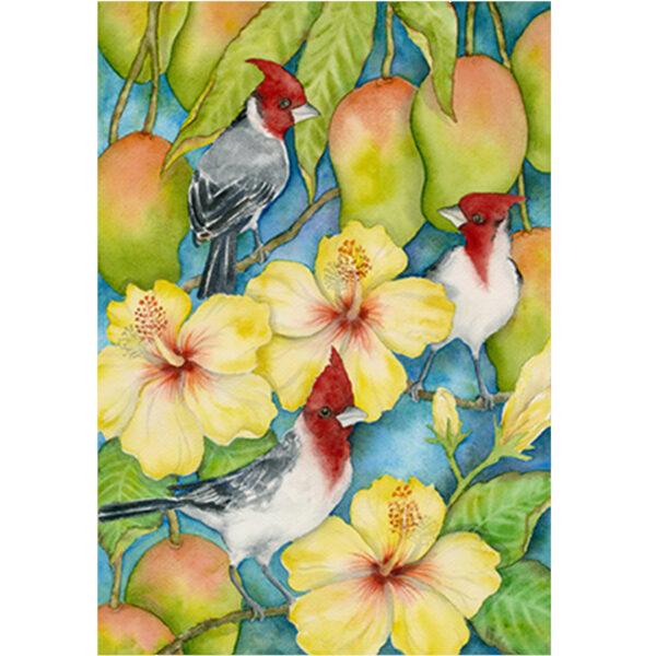 Brazilian Cardinals in the Mangos Note Card