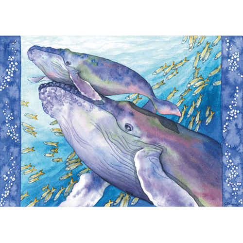 Humpback Whale - First Breath