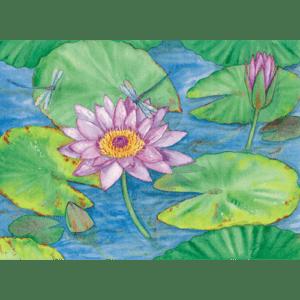 Waterlilies & Dragonflies Print