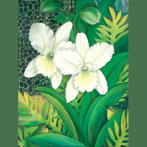 White Orchids & White Eyes Print
