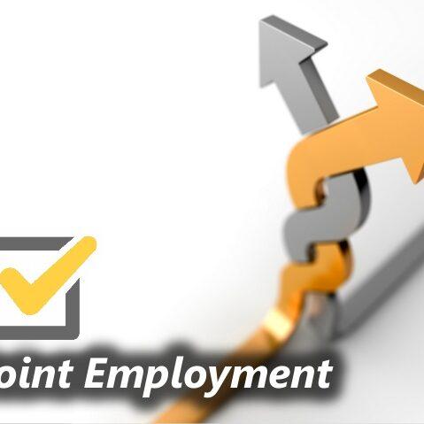 JointEmployment2