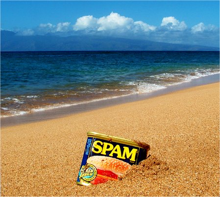"SPAM – Hawaiian for ""Bacon"""