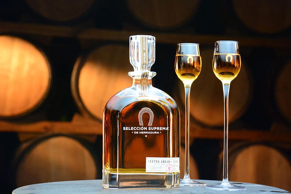 Tequila Herradura Express de Guadalajara Jalisco Mexico Proceso de elaboración del TEquila