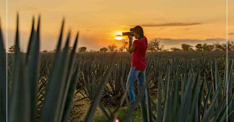 5 Records Mundiales asociados al Tequila