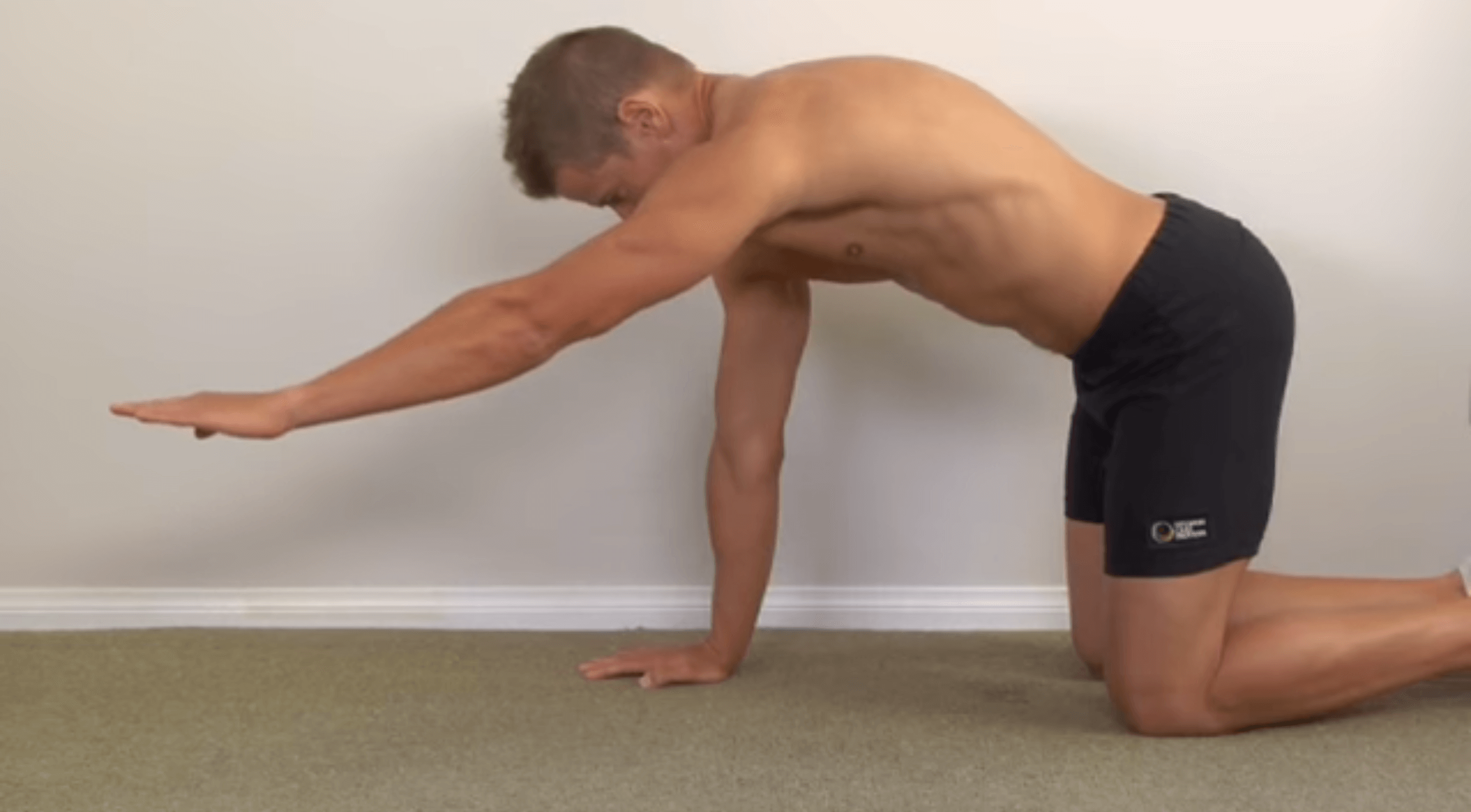 Scapula Stabilizers Strengthening